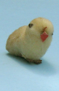 18-This chick is only 4 cm wide.